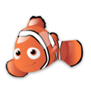 nemo,fish,animal