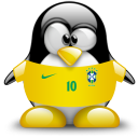 brazil,penguin,animal