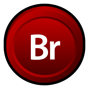 adobe,bridge,cs,badge