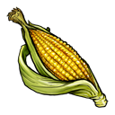 corn,fruit,vegetable