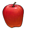 apple,fruit,vegetable