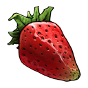 strawberry,fruit,vegetable