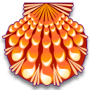 lyropecten,nodosa