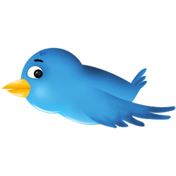 twitter,bird,animal,social network,social,sn
