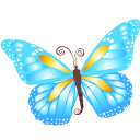 butterfly,blue