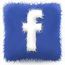 furry,cushion,facebook,social,social network,sn