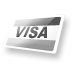 visa,credit card