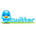 twitter,bird,social,animal,social network,sn