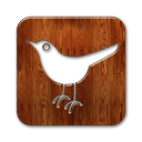 twitter,bird,square,animal,social network,social,sn