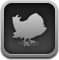 twitterrific,bird,animal
