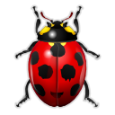 kbugbuster,bug,insect,ladybird,animal