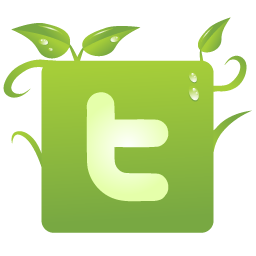 Image result for green twitter icons