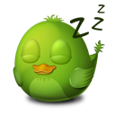 sleep,bird