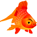 Fish Icon Png Ico Or Icns Free Vector Icons