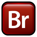adobe,bridge,cs