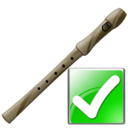 flute,ok,instrument,right,yes,correct,next,forward,arrow