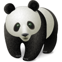 panda,animal,bear,china,chinese,oriental