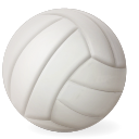 volleyball,sport