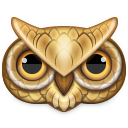 owl,animal,bird
