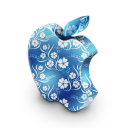 mac,blue,flower,plant