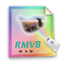 rmvb,file,paper,document,video