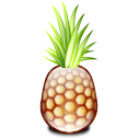 pineapple,fruit