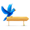 bird,sign,twitter,animal,social network,social,sn