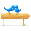 bird,and,sign,twitter,animal,social network,social,sn